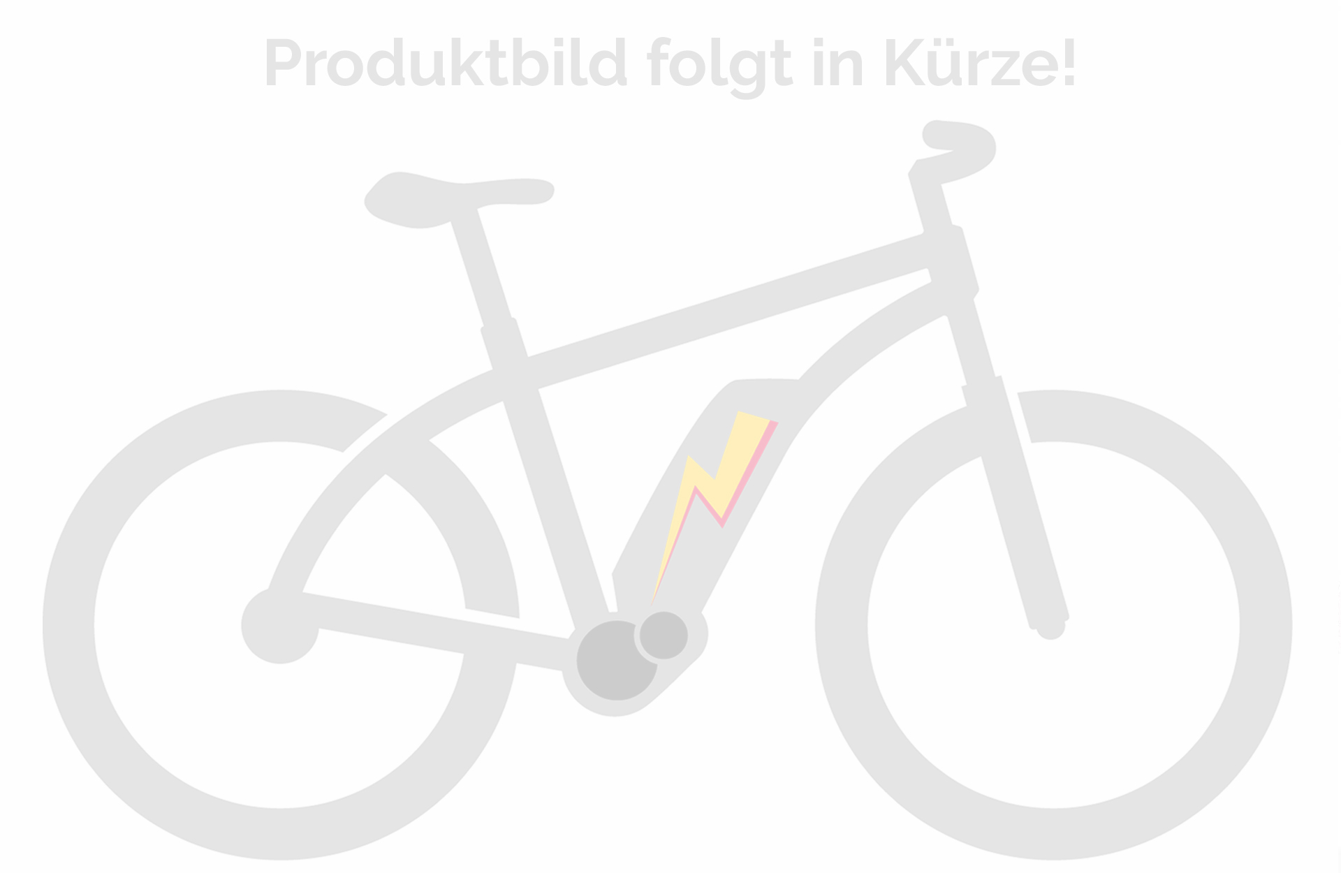 Specialized Turbo Levo Hardtail Comp 2021