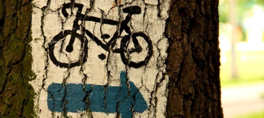 e-Bike-Wegkennzeichnung-im Wald