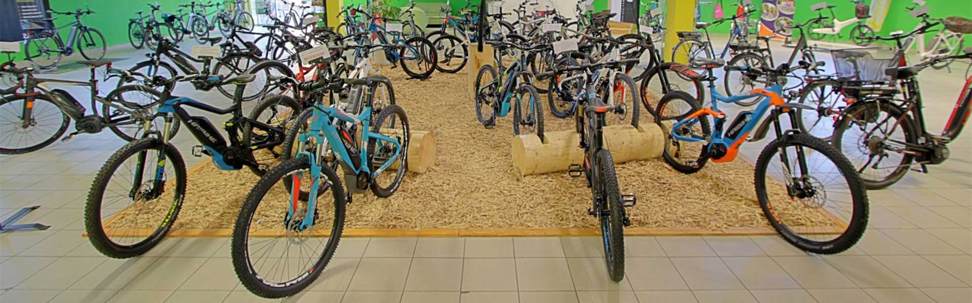 Der Shop der e-motion e-Bike Welt Bern